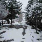 تهران و برف